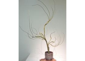 古流(生花・現代花)のイメージ