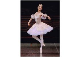 フェアリーバレエⅠ・Ⅱのイメージ