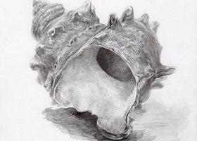 鉛筆で描くのイメージ