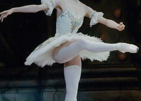 グレイスバレエ(初級)のイメージ